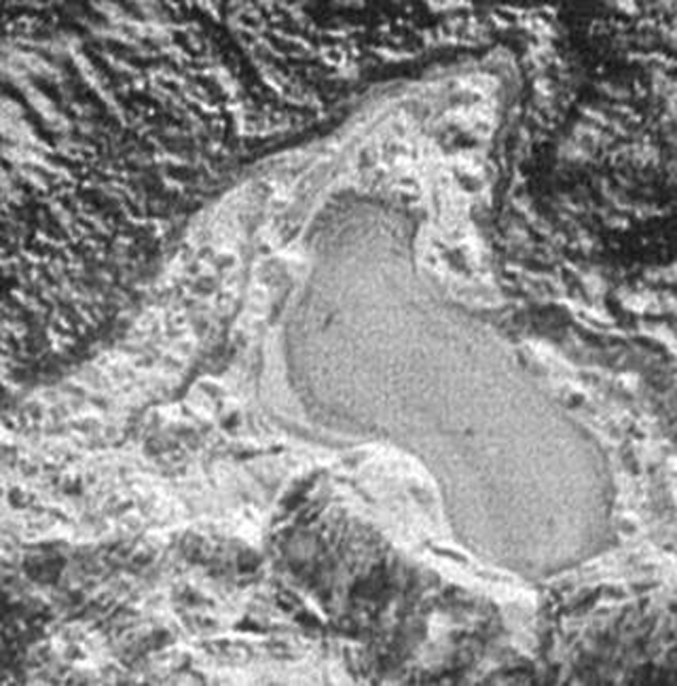 Figure 17: This flat feature in the Al-Idrisi Montes to the west of Sputnik Planum looks very much like a frozen lake surface. Credit: NASA/JHUAPL/SwRI